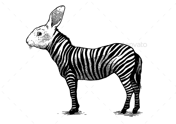 The Zebrabbit