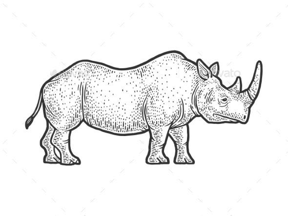 Rhinoceros Sketch Vector Illustration