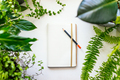 Notebook and plants - PhotoDune Item for Sale