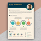 Infographic Resume - GraphicRiver Item for Sale
