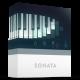 Sonata - Logo Ident - VideoHive Item for Sale