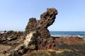 volcanic shore in Tenerife - PhotoDune Item for Sale