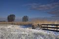 Landscape near Wijckel - PhotoDune Item for Sale
