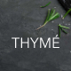 Thyme - Restaurant & Cafe Elementor Template Kit - ThemeForest Item for Sale