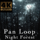 Night Forest V2 Pan - VideoHive Item for Sale