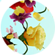 Flowers Dance - VideoHive Item for Sale