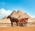 District of city of Giza - PhotoDune Item for Sale