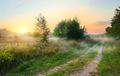 Spring field at sunrise - PhotoDune Item for Sale