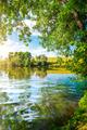 Landscape pond and forest - PhotoDune Item for Sale