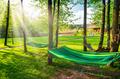 Garden and hammock - PhotoDune Item for Sale