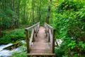 Bridge over Tara river - PhotoDune Item for Sale