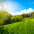 Beautiful green field - PhotoDune Item for Sale