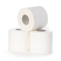 Toilet paper isolated on white background. - PhotoDune Item for Sale