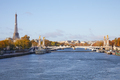 Alexander III bridge, Eiffel tower and Seine river view in a sunny autumn day in Paris, France - PhotoDune Item for Sale