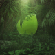 Nature/Jungle Logo Reveal - VideoHive Item for Sale