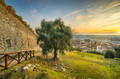 Pietrasanta aerial view from Rocca di Sala fortress at sunset, Versilia Lucca Tuscany Italy - PhotoDune Item for Sale