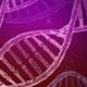 DNA Molecules - GraphicRiver Item for Sale