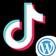 TikTok Video Downloader Without Watermark WordPress - CodeCanyon Item for Sale