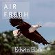 Air Fresh