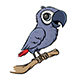 Cartoon Parrot - GraphicRiver Item for Sale
