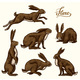 Wild Hares Set. Rabbits Are Sitting and Jumping - GraphicRiver Item for Sale