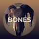 Bones Titles 1 - VideoHive Item for Sale