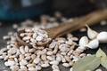 Wooden Spoon of Pinto Beans - PhotoDune Item for Sale