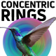 Concentric Rings - GraphicRiver Item for Sale