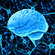 Blue Human Brain and Neurons 3D Render - GraphicRiver Item for Sale