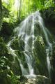 Waterfall in green jungle - PhotoDune Item for Sale