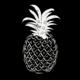 The App Logo