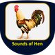 Sounds of Hen