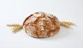 Rustic sourdough bread with crispy crust - PhotoDune Item for Sale