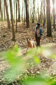 Casual Woman Walking Dog in Forest while Wearing Protective Face Mask. - PhotoDune Item for Sale