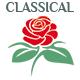 Dramatic Baroque Logo