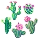 Set of with Cacti and Flowers - GraphicRiver Item for Sale