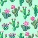 Seamless Pattern with Cacti and Flowers - GraphicRiver Item for Sale