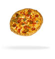 Delicious Pizza Isolated over white background - PhotoDune Item for Sale
