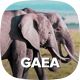 Gaea - Environmental WordPress Theme - ThemeForest Item for Sale