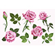 Pink Vector Roses - GraphicRiver Item for Sale