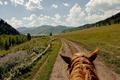 riding horse hiking - PhotoDune Item for Sale