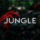 Exotic Birds in Jungle
