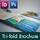 Caribbean Holiday, Travel Offer, Tri-fold Brochure - GraphicRiver Item for Sale