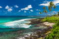 Tropical beach on south side of Samoa Island with coconut palm trees - PhotoDune Item for Sale