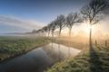beautiful serene foggy sunrise in countryside - PhotoDune Item for Sale