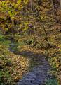 Autumn in Ojcow National Park, Poland - PhotoDune Item for Sale