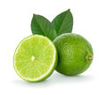 Lime closeup isolated on white background. - PhotoDune Item for Sale