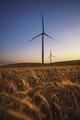 A wind turbine. Electricity wind generator. Renewable energy - PhotoDune Item for Sale