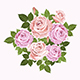 Pink and Beige Vector Roses - GraphicRiver Item for Sale