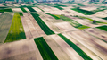 Cultivated Fields in Farmland at Countryside at Spring. Aerial Drone View - PhotoDune Item for Sale